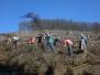 Holzstellen 2011